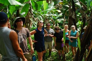 http://outwardboundcostarica.org/programs/group-programs/