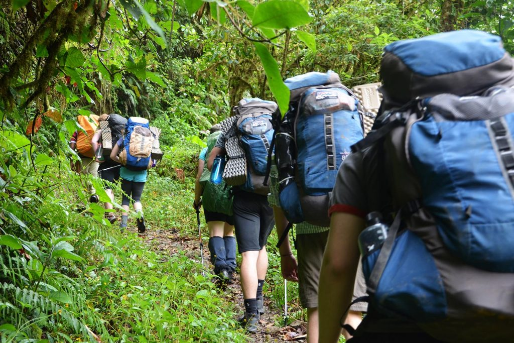 Rainforest Hike And Homestay Outward Bound Costa Rica